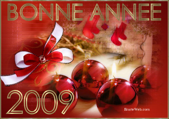 Bonne Année 2009 4